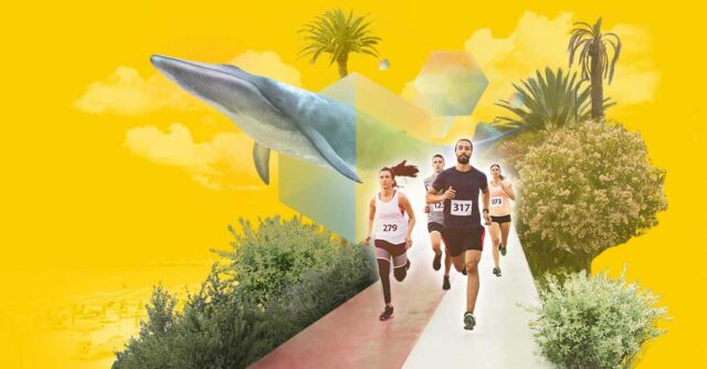 Run for The Whales 2021